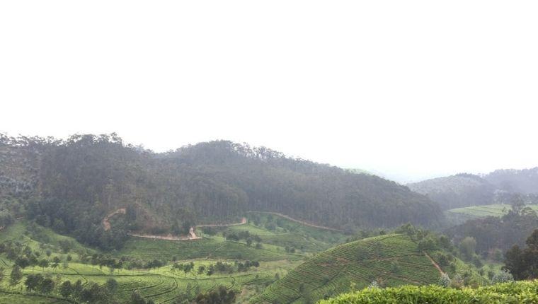 まとめ:ルワンダにいるなら一度は行きたいキタビ