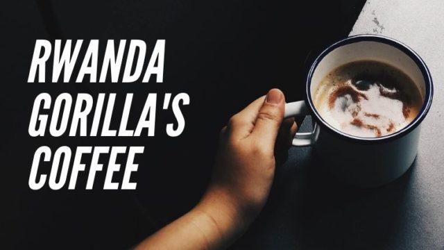 キガリにいながらルワンダのコーヒー産業体験!