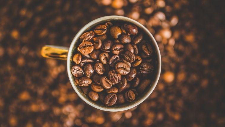 実は多くのコーヒー団体を支えるGorilla Coffee