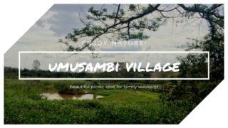 鳥の保護公園!家族連れにピッタリのUmusambi Village